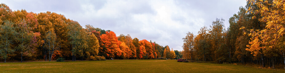 Foto op Canvas Bomen Warm autumn panorama of the lowland in the Park with yellowed and reddened trees stretching into the distance to the horizon with a blue sky covered with clouds, Indian summer in the forest, field
