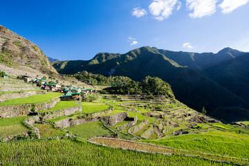 Rizières de Batad aux Philippines