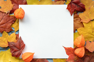 Autumn composition of maple leaves and square white paper. Flat lay, top view