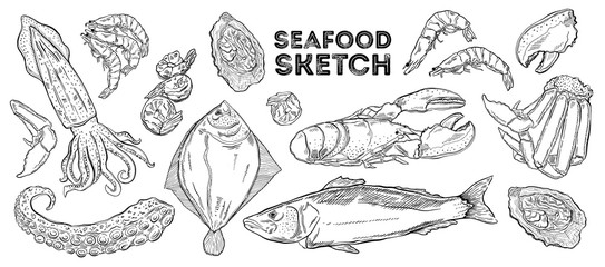 Seafood sketch set. Hand drawing cuisine. All elements are isolated in white background.