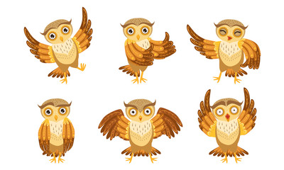 Wall Mural - Cute Owl Cartoon Characters Set, Adorable Funny Owlets in Different Poses Vector Illustration