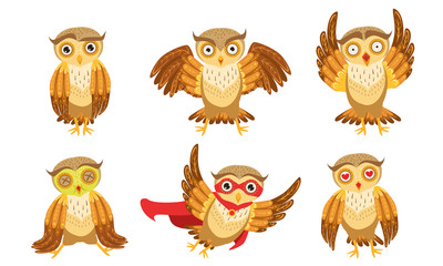 Wall Mural - Cute Owl Cartoon Characters Set, Adorable Funny Brown Owlets in Different Poses Vector Illustration