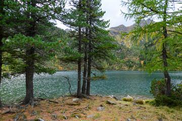 lake scheibelsee at mountain scheibelalm, hohentauern, styria, austria