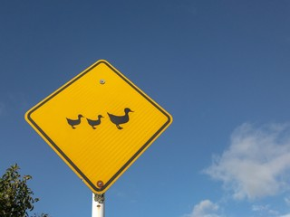 Ducks crossing yellow sign