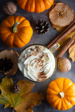 Spiced autumn pumpkin latte drink with cinnamon and cream foam top view with colorful autumn drink