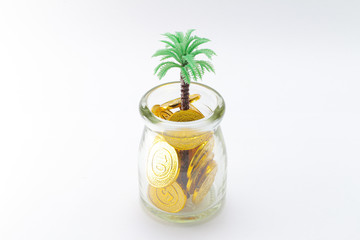 a Coins And Plant, money coins with tree grow up,