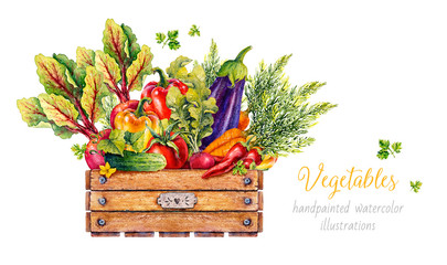 Vegetables in a wooden box. Watercolor illustration