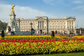 Spring flowers in front of Buckingham Palace