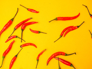 Wall Mural - red chilli on yellow background