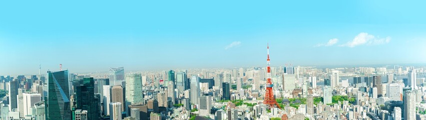 The most beautiful viewpoint panorama Tokyo tower in tokyo city ,japan. Fototapete