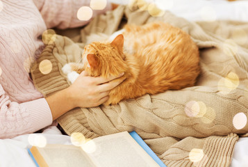 Fototapete - pets, hygge and people concept - close up of female owner stroking red tabby cat in bed at home