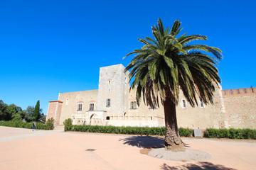 Tuinposter Tunesië Palais des rois de Majorque à Perpignan, France