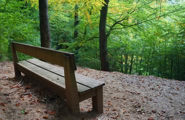 Sitzbank im Wald bench forest