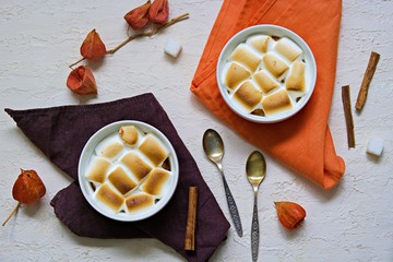 A traditional Thanksgiving dish, sweet potato casserole with marshmallows in portioned forms on a light concrete background. American cuisine. Thanksgiving Recipes. Top view, copy space.