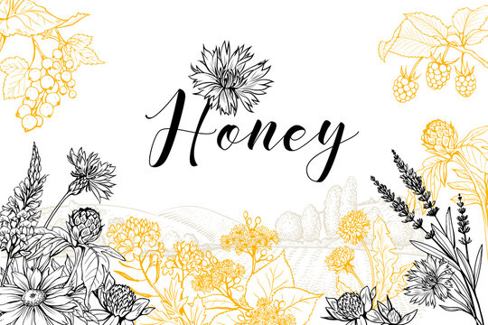 Flower honey vector hand drawn banner template. Natural homemade product poster layout with lettering. Wildflowers sketch on rural village landscape background. Organic food packaging design