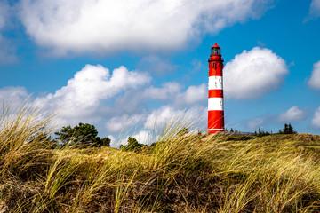 Fototapeta Blick zum Amrumer Leuchtturm aus den Dünen