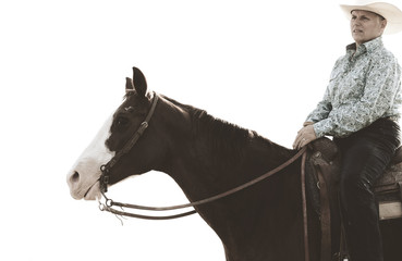 Western lifestyle image with cowgirl on horse, isolated white background.
