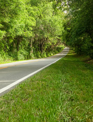 Country Road in Northern Florida