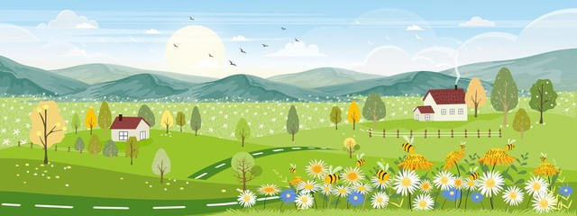 Cute cartoon panorama landscape of Spring field and wild flowers with family bee flying, Lovely card with sun shine, cloud and honey bee collecting pollen on flowers in sunny day, Summer background