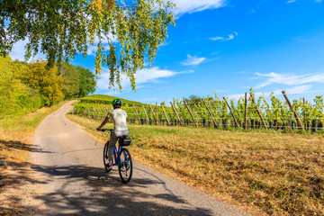 Young woman cyclist riding along Alsatian Wine Route near Riquewihr village, France