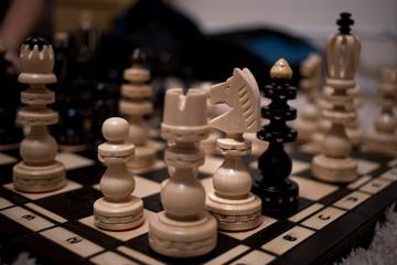 white horse on chessboard