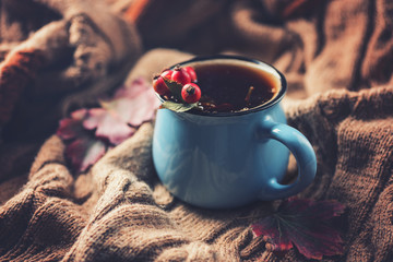 Herbal tea with dogrose in a mug on a background of a knitted , concept of autumn, toned image