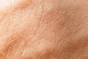 Close-up view of human skin with hair