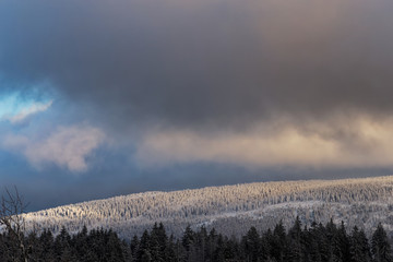 Dark clouds over the winter forest