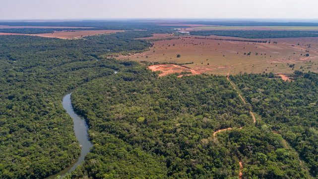 Aerial view of a meandering Amazon tributary river, roads through rainforest and bordering agricultural land, Amazonian rainforest, San Jose do Rio Claro, Mato Grosso