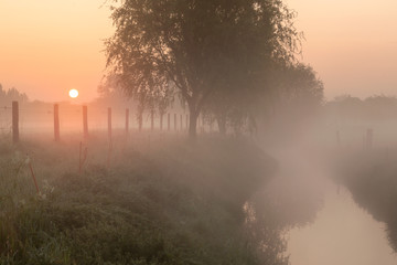 Sunrise by the  creek at a foggy morning in Menen, Belgium Wall mural