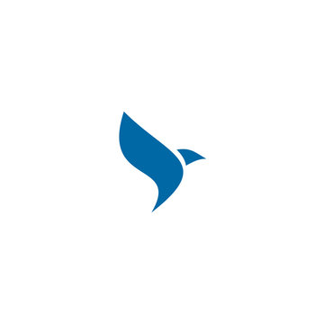 Bird logo design vector template