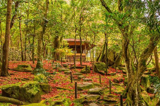 日本の秋 滋賀 旧竹林院⑯  Autumn in Japan, Shiga Prefecture,former Chikurin-in ⑯