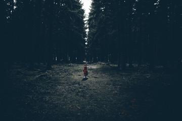 Kleines Kind mit roter Jacke im dunklen Wald