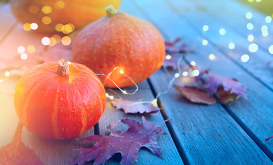 Fotomurales - thanksgiving holiday party background, autumn pumpkin and holidays light decoration