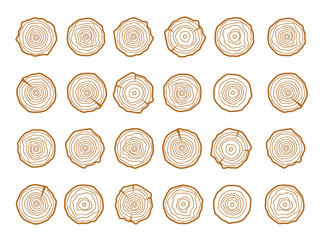 Vector tree rings. Wood texture vector. Abstract circle tree background
