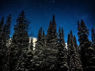 winternacht in norwegen