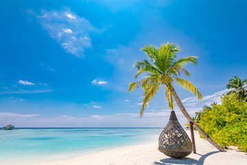 Beautiful tropical Maldives beach under cloudy sky with swings or hammock on coconut palm. Luxury vacation concept