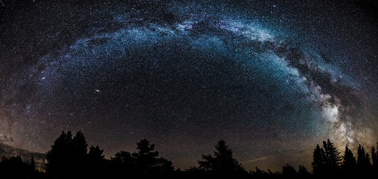 Night sky filled with stars including the core of the Milky Way with pine trees silhouetted on the horizon.  Andromeda galaxy under the Milky Way.