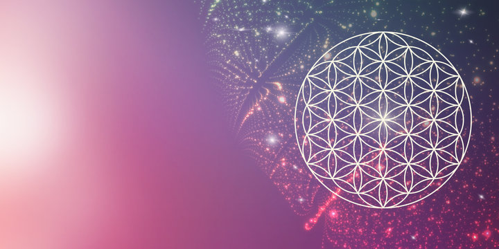 flower of life - spiritual cosmic light - background / banner