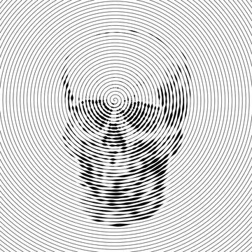 Skull full face from digital spiral lines on white background.