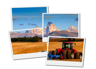 Tractor Farming Ground Harvesting Crops in Fall Autumn Teton Mountains Rugged Film Frame Photoraph