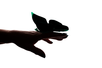 Female hand with artificial butterfly, butterfly layout - silhouette isolated
