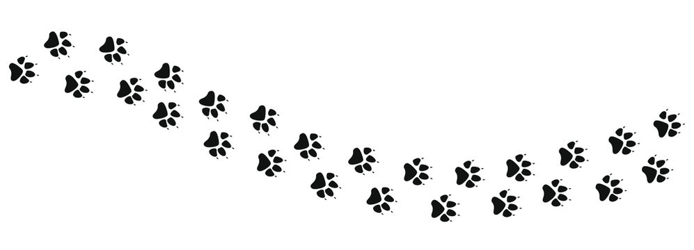 Paw prints icon in flat style. Footprints animals symbol for your web site design, logo, app