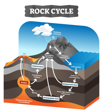 Rock cycle vector illustration. Educational labeled geology process scheme.