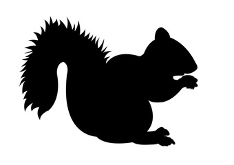 Squirrel black silhouette vector illustration
