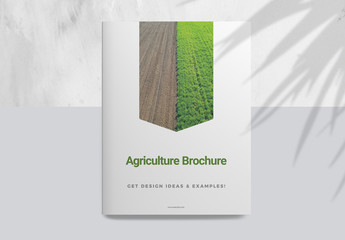 Brochure Layout with Green Elements