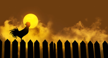 Rooster crow at sunset on the fence