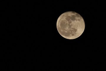 月の写真   ヒヤデス星団食 日本 九州 熊本県 2018年11月24日20時34分 撮影  Photo of the moon    Hyades star food  Japan Kyushu Kumamoto Prefecture November 24, 2018 20:34