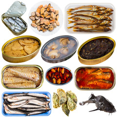Set of assorted raw fish and seafoods
