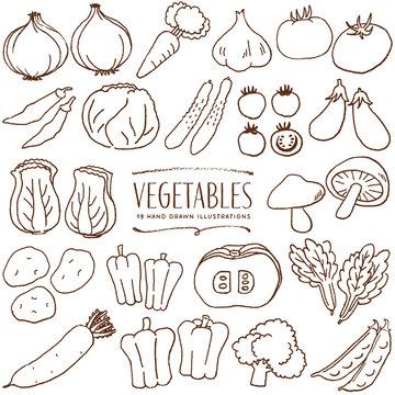 野菜 手描き イラスト 線画